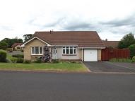 Detached Bungalow for sale in Ryecroft Park, Wooler...