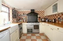 Elderton Road Terraced property to rent