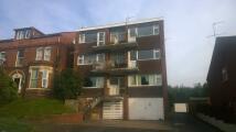Flat to rent in Caversham Court...