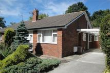 Semi-Detached Bungalow in Out Elmstead Lane...