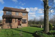 4 bed Detached house in Daisy Hill, Morley, Leeds