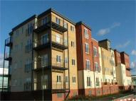 Paveley Court Apartment to rent