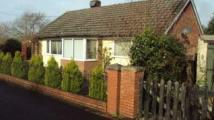 Springfield Road Bungalow to rent