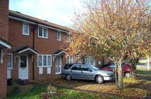 2 bed house in Kenwyn Close, Taunton