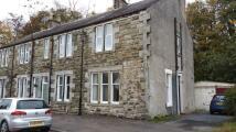 Flat to rent in main street Dunlop