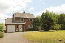 Detached home for sale in High Street, Bromham...