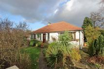 Bungalow for sale in Kersal Road, Salford...
