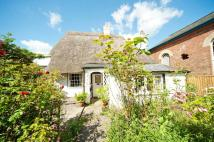 1 bedroom Detached home for sale in The Thicket...