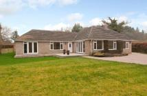 Bungalow for sale in Yattendon Road...