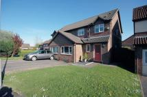 semi detached home in Clos Nant Ddu...