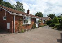 Bungalow to rent in Berkeley Close, Verwood