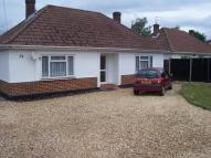 Detached Bungalow to rent in Kingsway, Ferndown, BH22
