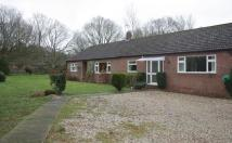 Detached Bungalow to rent in Fakenham Road Norwich