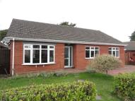 Detached Bungalow for sale in Baldric Road, Taverham...