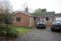 3 bed Detached Bungalow to rent in Pond Lane, Drayton...