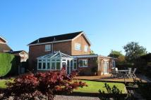 Detached home for sale in Shelley Drive, Taverham...