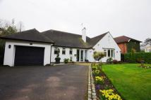 Delaheys Drive Detached Bungalow for sale