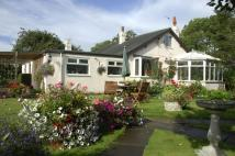 Detached Bungalow in Clay Lane, Breighton...