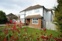 8 bedroom Detached house in Shaw Crescent...