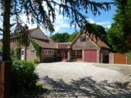 4 bed semi detached house in Scottow Row, Scottow...