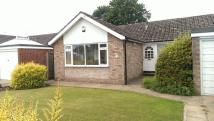 Detached Bungalow for sale in Orchard Way, Nettleham...
