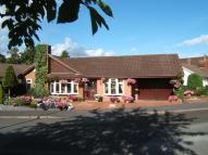4 bed Detached Bungalow for sale in Spinney Drive, Weston...