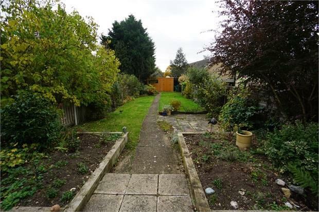 Garden & Outside Area