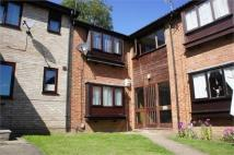 Studio flat to rent in Sioux Close, Highwoods...