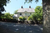 Littleheath Lane Detached property to rent