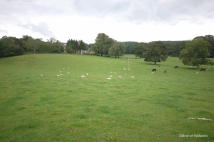 Plot for sale in Ballechin Farm Plots...