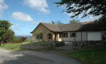 3 bed Detached Bungalow in Braemore View...