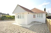 3 bedroom Detached Bungalow to rent in Hunter Avenue, Shenfield...