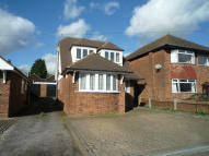 5 bed Bungalow to rent in HUNTER AVENUE, Shenfield