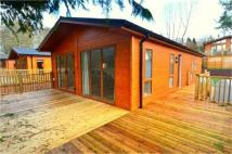 Park Home for sale in White Cross Bay Leisure...
