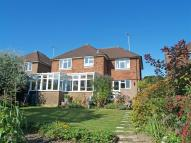 Detached property to rent in Petworth