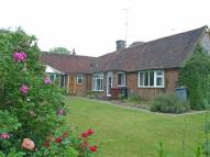Chichester Bungalow to rent