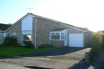 3 bed Detached Bungalow to rent in Folly Lane, Wool, Wool