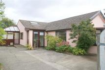 Colliers Lane Detached Bungalow for sale