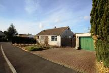 3 bedroom Detached Bungalow for sale in 14 Yadley Close...