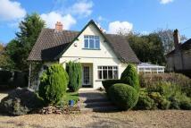 4 bedroom Detached home in Bridgwater Road...