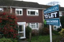 semi detached home to rent in Birling Drive