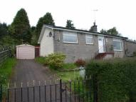 3 bed Detached Bungalow in 34 Straid A Cnoc...