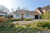 Detached Bungalow for sale in Private Road, Enfield...