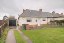 Semi-Detached Bungalow to rent in Stafford Street...