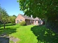 4 bed Detached Bungalow for sale in Lowes Close...