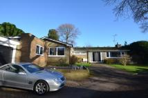 Detached Bungalow for sale in  Kingswood, Surrey, KT20