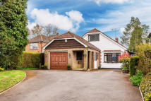 Detached property for sale in Hilltop Lane, Chaldon