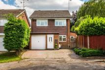 Lingfield Drive Detached house for sale