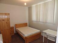 1 bedroom Studio apartment in Aylward Street...