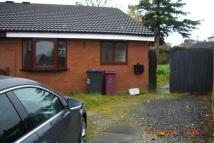 Semi-Detached Bungalow to rent in STONE HILL DRIVE...